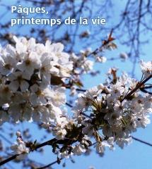 Photo Edito N° 171.jpg