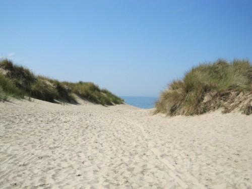 Le sable et les dunes - IMG_4996 - compressé.JPG